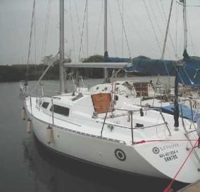 Cruiser 31 Levante
