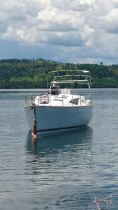 MJ 38 DS Trawler - Olle